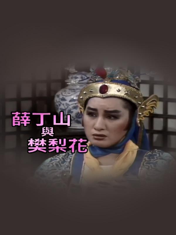 楊麗花精華版